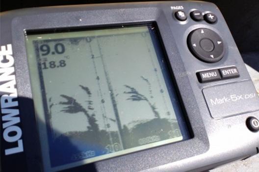 ローランス Mark-5X DSI