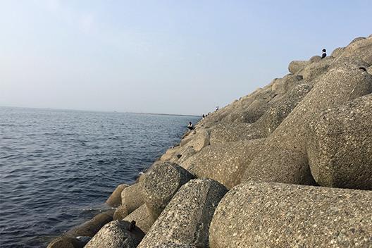 貝塚人口島