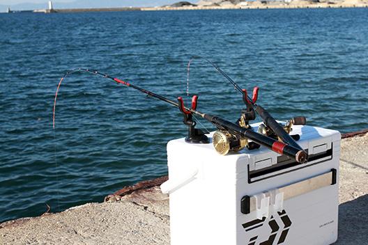 堤防で数釣り最強はチヌ竿でのヘチ釣り!ルアーマンにもおすすめ。