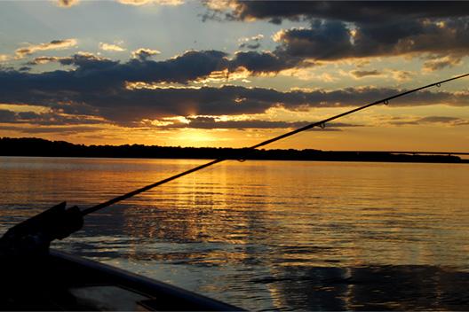 初めて釣り竿を買う人に!最初の1本におすすめのロッドとその理由。