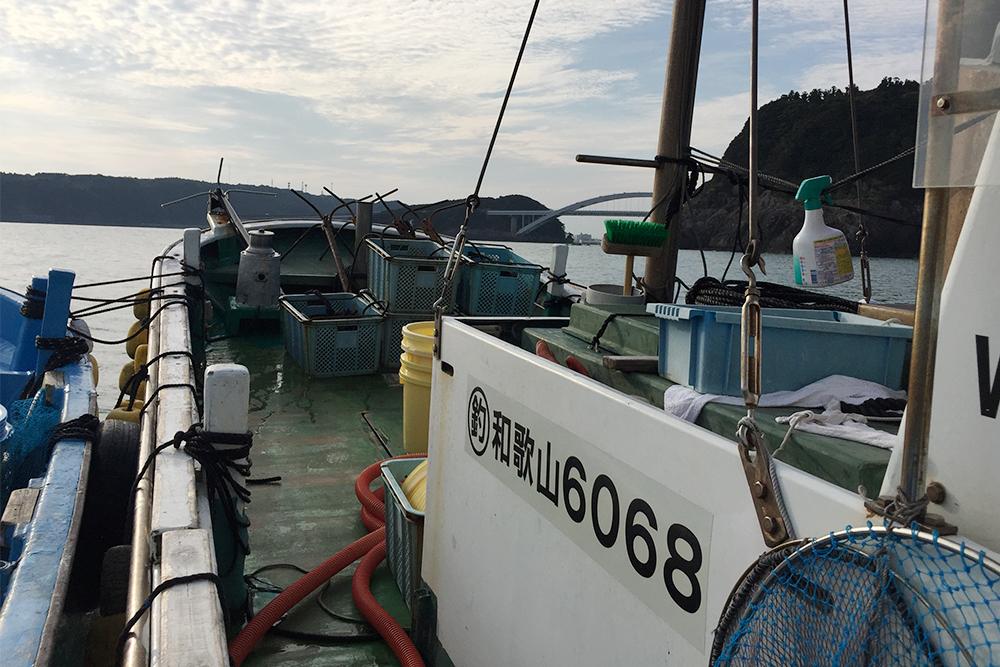 カセ釣り 章丸渡船